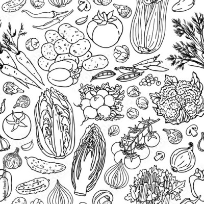 Fototapeta Vegetable sketchy line seamless pattern
