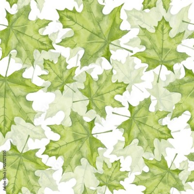 Fototapeta Green maple leaves. Watercolor painting. Seamless pattern. Background 8