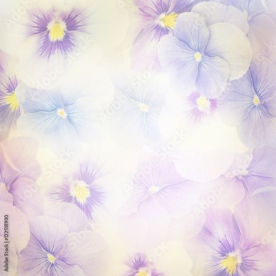 Panel Szklany Violet Flowers Background