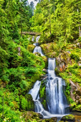 Plakat Triberg Falls, one of the highest waterfalls in Germany
