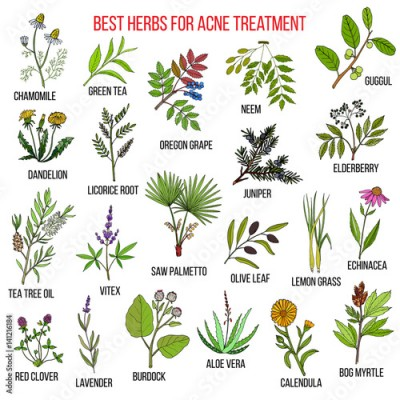 Panel Szklany Collection of herbs for acne treatment