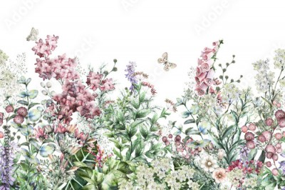 Fototapeta seamless rim. Border with Herbs and wild flowers, leaves. Botanical Illustration Colorful illustration on white background. Spring composition with butterfly