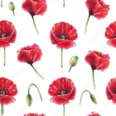 Panel Szklany Seamless floral pattern with beautiful red poppy flowers